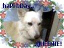 Our Queenie