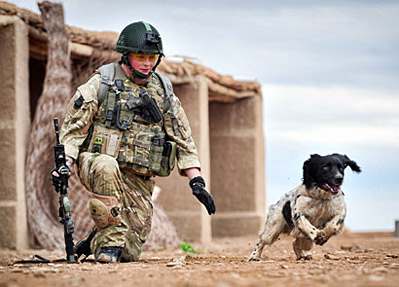 Lance Cpl. Liam Tasker & Theo (Credit A.P. photo)