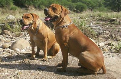Nacho and his sister, Gina
