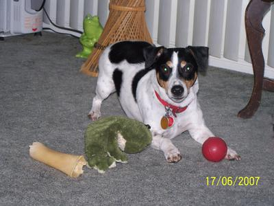 Jake and his toys