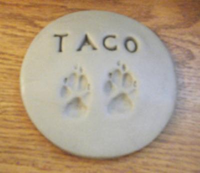 Taco's paws