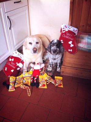 Brecon (L) & Radnor  - Christmas 2013
