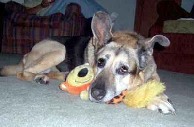 My Gita and her Squeaky Squirrel!