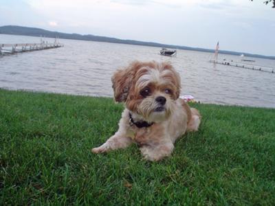 Roxy on Vacation @ Lake Leelanau-2007